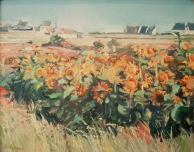 <h5>Sunflowers at Penhors</h5><p>O:L 9 x 15 1973																																																																																																																																																																																																																																																																																																																																			</p>