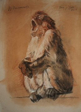 <h5>Study for Sloth</h5><p>Tri-Color Drawing: Charcoal and Sanguine Heightened with White on Arches paper  																																																			</p>